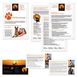 Info & Programm